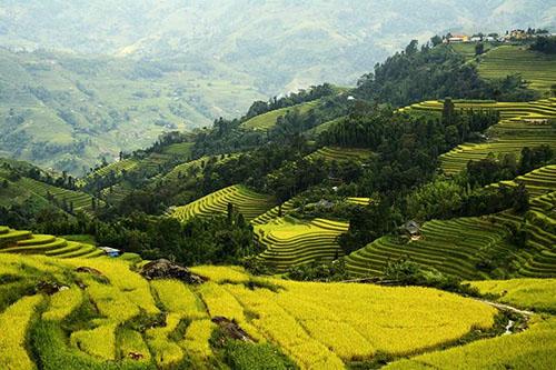 La vallée de Tu Le | Asia Hero Travel | Vietnam
