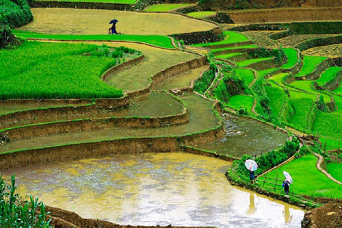 Sapa | Asia Hero Travel | Vietnam