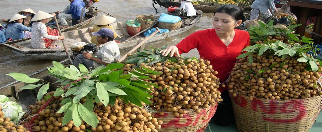Le Mekong | Asia Hero Travel | Agence de voyage au Vietnam