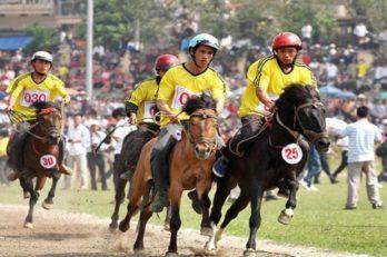 La course des chevaux à Bac Ha